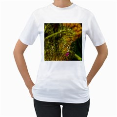 Dragonfly Dragonfly Wing Insect Women s T Shirt (white)
