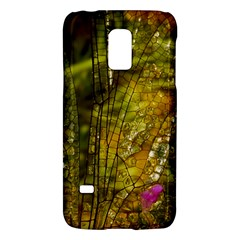 Dragonfly Dragonfly Wing Insect Galaxy S5 Mini