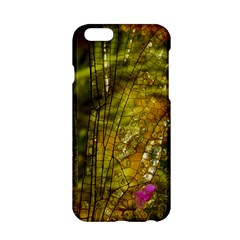 Dragonfly Dragonfly Wing Insect Apple Iphone 6/6s Hardshell Case