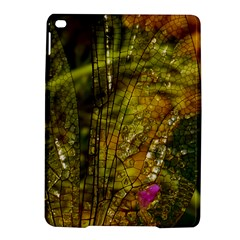 Dragonfly Dragonfly Wing Insect iPad Air 2 Hardshell Cases