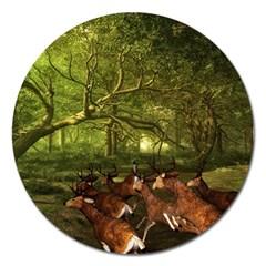 Red Deer Deer Roe Deer Antler Magnet 5  (round)