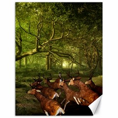 Red Deer Deer Roe Deer Antler Canvas 18  x 24