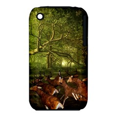 Red Deer Deer Roe Deer Antler Iphone 3s/3gs