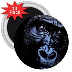Gorilla 3  Magnets (10 pack)