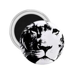 Lion  2.25  Magnets