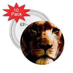 Lion  2.25  Buttons (10 pack)