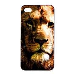 Lion  Apple iPhone 4/4s Seamless Case (Black)