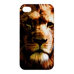 Lion  Apple iPhone 4/4S Hardshell Case