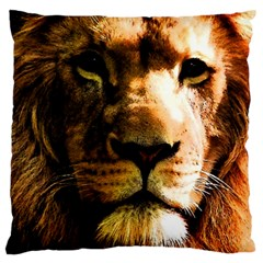 Lion  Large Cushion Case (Two Sides)