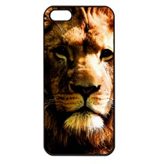 Lion  Apple iPhone 5 Seamless Case (Black)