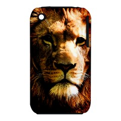 Lion  iPhone 3S/3GS