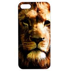 Lion  Apple iPhone 5 Hardshell Case with Stand