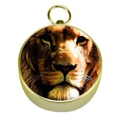 Lion  Gold Compasses