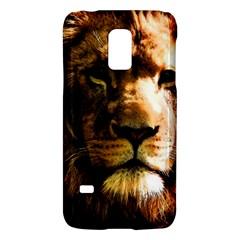 Lion  Galaxy S5 Mini