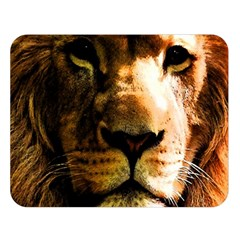 Lion  Double Sided Flano Blanket (Large)