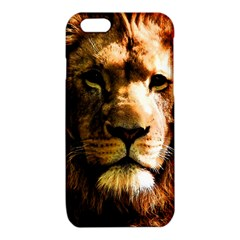 Lion  iPhone 6/6S TPU Case