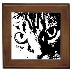 Cat Framed Tiles