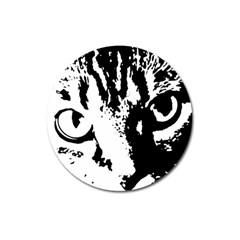 Cat Magnet 3  (Round)