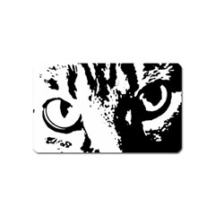 Cat Magnet (Name Card)