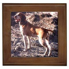 Bracco Italiano Full 2 Framed Tiles