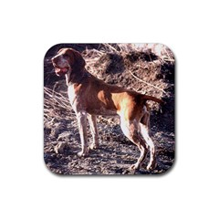 Bracco Italiano Full 2 Rubber Coaster (Square)