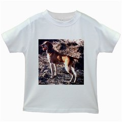 Bracco Italiano Full 2 Kids White T-Shirts