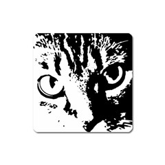 Lion  Square Magnet