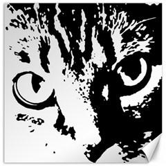 Lion  Canvas 20  x 20