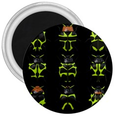 Beetles Insects Bugs 3  Magnets