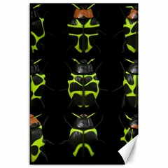 Beetles Insects Bugs Canvas 24  x 36