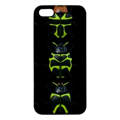 Beetles Insects Bugs iPhone 5S/ SE Premium Hardshell Case