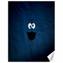 Funny Face Canvas 18  x 24