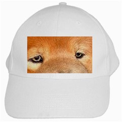 Chow Chow Eyes White Cap