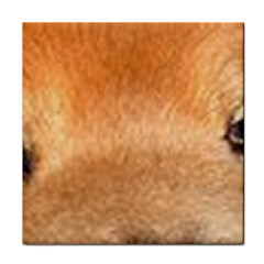 Chow Chow Eyes Tile Coasters