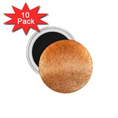 Chow Chow Eyes 1.75  Magnets (10 pack)
