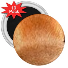 Chow Chow Eyes 3  Magnets (10 pack)
