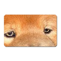 Chow Chow Eyes Magnet (Rectangular)