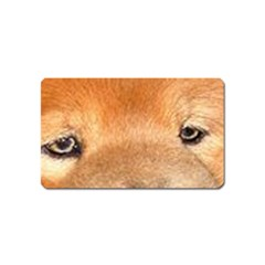 Chow Chow Eyes Magnet (Name Card)