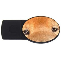 Chow Chow Eyes USB Flash Drive Oval (2 GB)