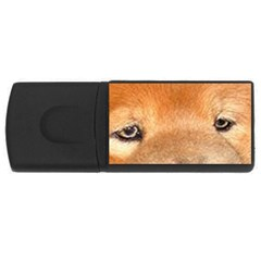 Chow Chow Eyes USB Flash Drive Rectangular (1 GB)