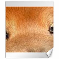 Chow Chow Eyes Canvas 8  x 10