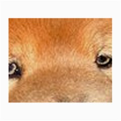 Chow Chow Eyes Small Glasses Cloth (2-Side)