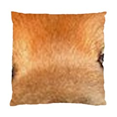Chow Chow Eyes Standard Cushion Case (Two Sides)