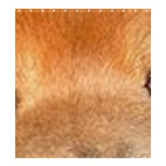 Chow Chow Eyes Shower Curtain 66  x 72  (Large)