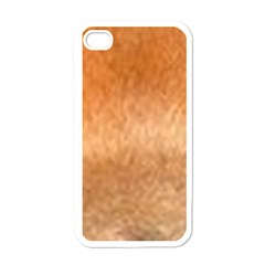 Chow Chow Eyes Apple iPhone 4 Case (White)