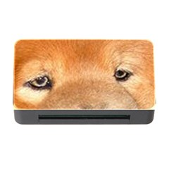 Chow Chow Eyes Memory Card Reader with CF