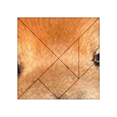 Chow Chow Eyes Acrylic Tangram Puzzle (4  x 4 )