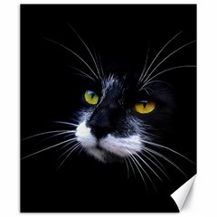 Face Black Cat Canvas 20  x 24
