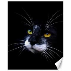 Face Black Cat Canvas 11  x 14