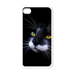 Face Black Cat Apple iPhone 4 Case (White)